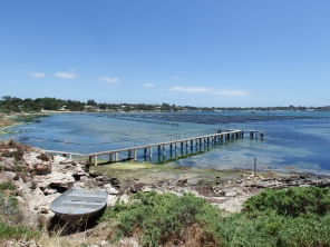 Oyster Farm in Coffin Bay