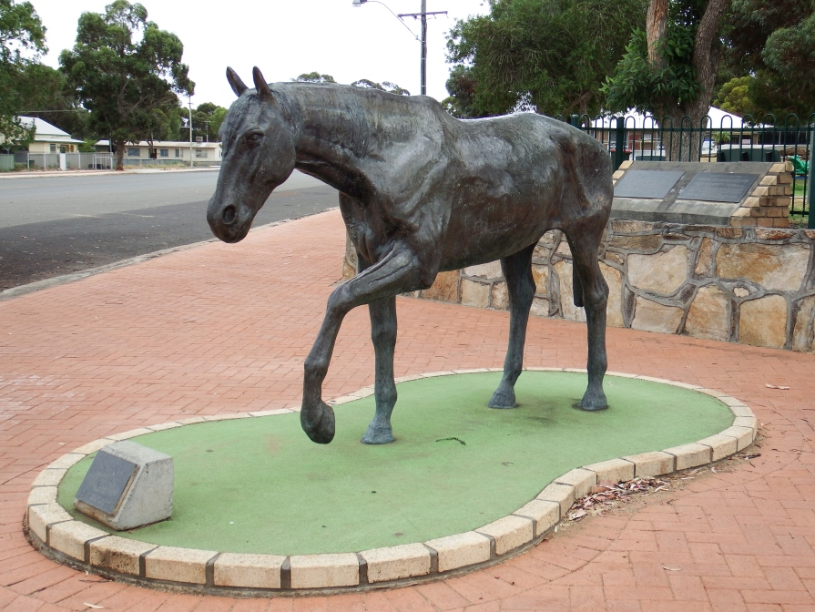 The statue of the horse for which the town was named, Norseman WA