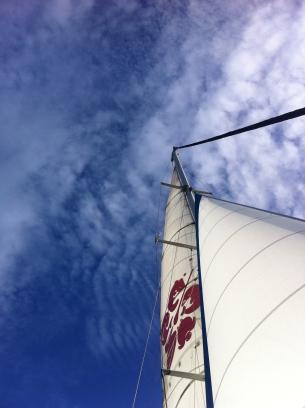 Shotover sail