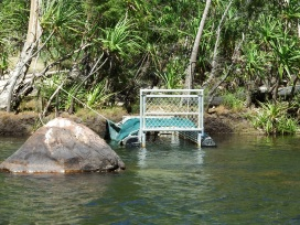 Croc trap on Jim Jim river