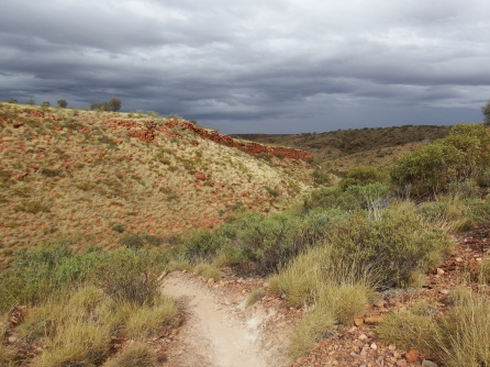 Pound Walk at Ormiston Gorge