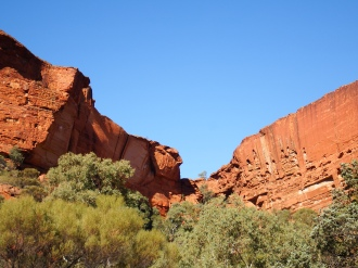 Kings Canyon from the ground