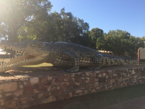The Big Crocodile