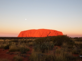 Uluru lit up by sunset