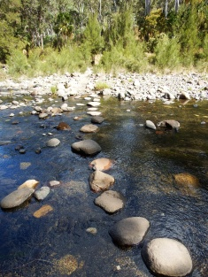 Another stepping stone crossing of Carnarvon Creek